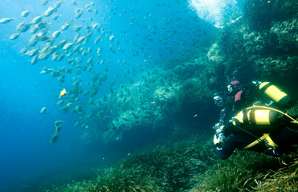 Bahia Nautica Almeria - Cabo de Gata