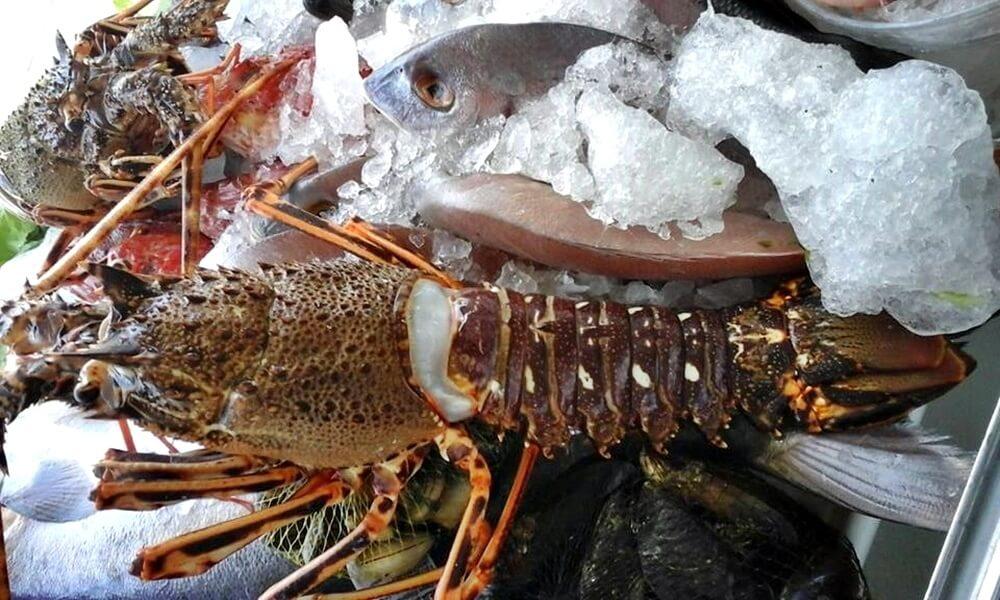 Marisquería El Boliche - Roquetas de Mar