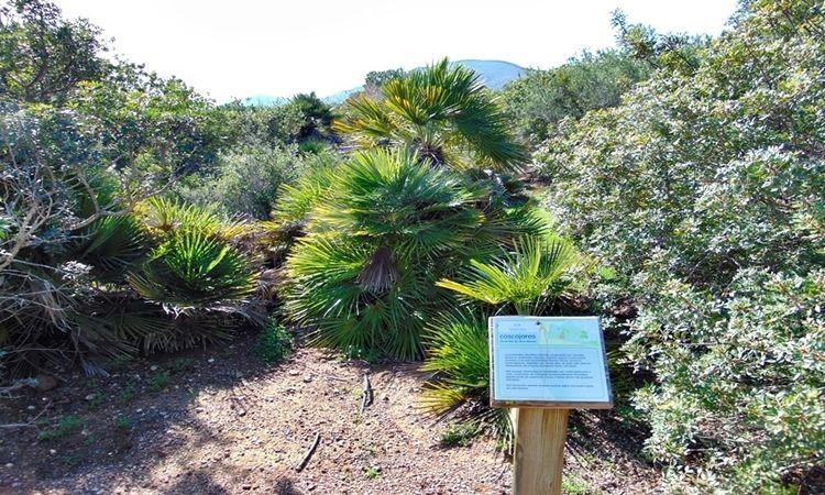 Jardín Botánico El Albardinal (Cabo de Gata)