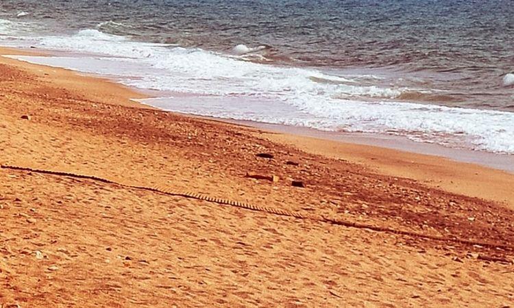 Playa de La Fabriquilla (Cabo de Gata)