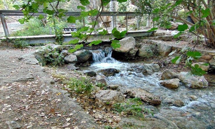 Arroyo de Celín (Celín - Dalías)