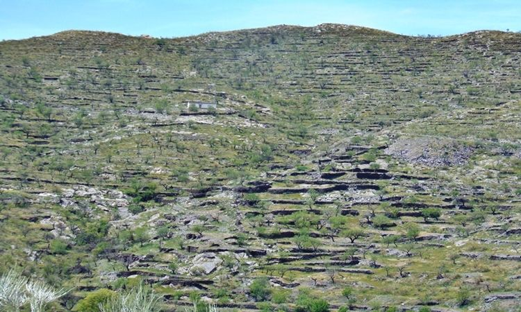 "The Stone ""Balates"" (Senes - Almeria)"