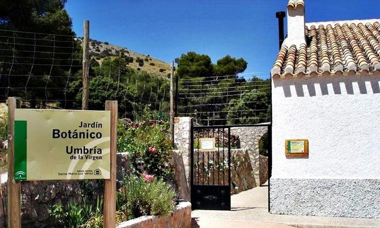 Jardín Botánico Umbría de la Virgen (María - Almería)