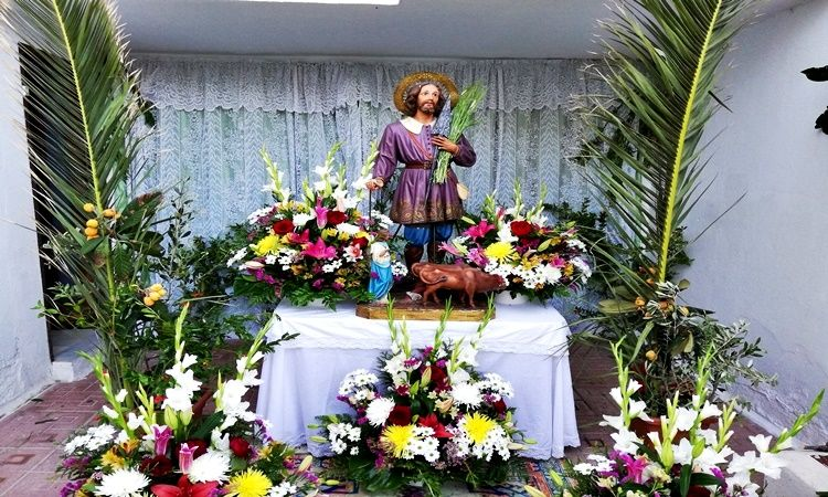 Saint Isidro Pilgrimage