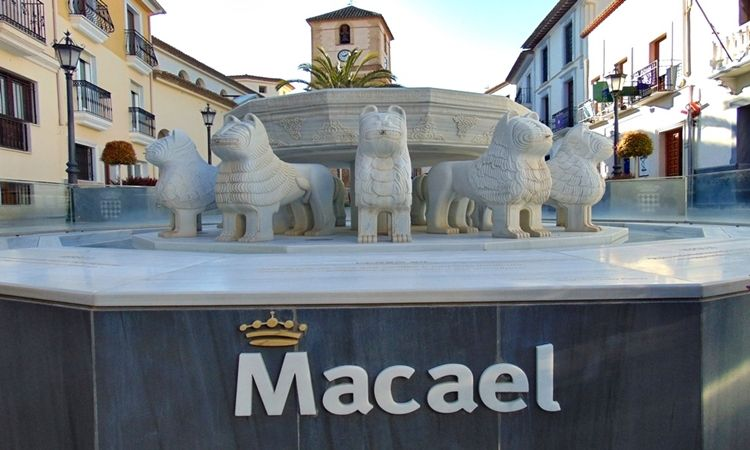 The Lion's fountain (Macael - Almeria)