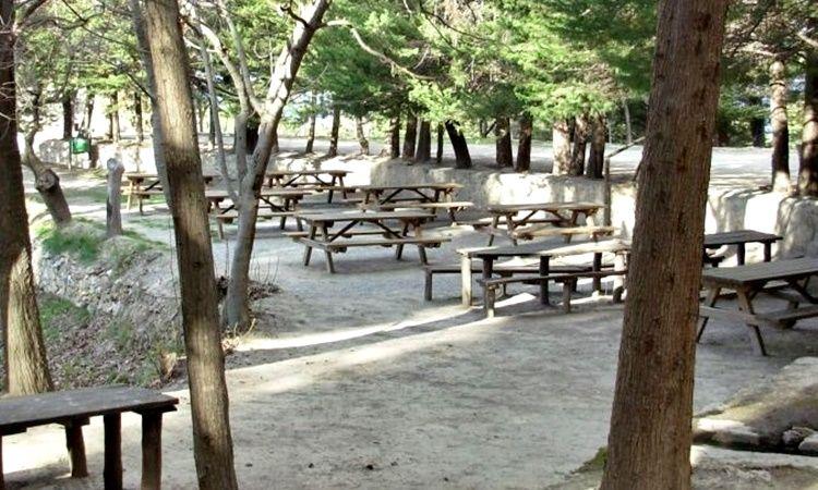 La Jordana picnic area (Seron - Almeria)