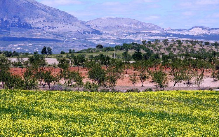 Sierra de las Estancias (Almeria)