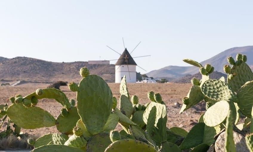 Cabo de Gata Landscape