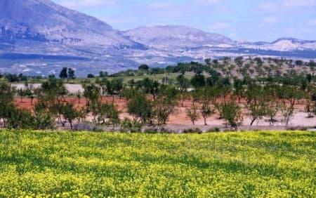Sierra de las Estancias (Almería)